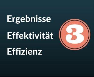 Das 3E-Prinzip – Ergebnisse, Effektivität, Effizienz