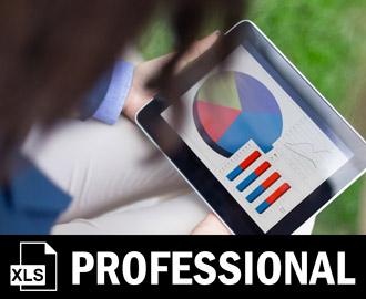 Excel-Training für Rechnungswesen und Controlling - Professional