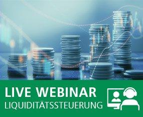 Online-Excel-Training: Liquiditätssteuerung und Kapitalbedarfsrechnung
